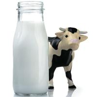 Khi nào bé có thể uống sữa bò tươi?