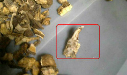 tq: phat hien dau chuot trong goi xoi sang - 7