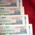Tin tức - Tiền 5 đồng 'hết đát' có giá gần nửa triệu