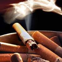 Việt Nam: 40.000 người chết do hút thuốc lá mỗi năm