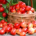Sức khỏe - Thần dược giúp trẻ lâu từ trái cây màu đỏ
