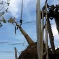 Tin tức - Sự cố mất điện: 8 triệu người được bồi thường?