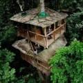 Nhà đẹp - Ở nhà trên cây, muôn phần thích thú