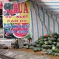 Mua sắm - Giá cả - Hoa quả nội 'chết đứng' vì nghi án hàng Tàu