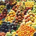 Mua sắm - Giá cả - Giải mã chất làm trái cây chín mau, tươi lâu