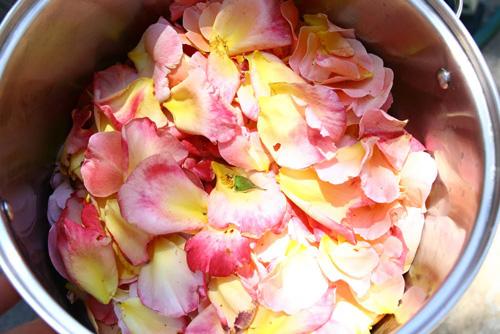 Da trắng mềm nhờ mặt nạ cánh hồng - 4