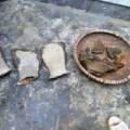 Tin tức - Đào giếng tìm được xương khủng long hóa thạch