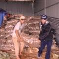 Mua sắm - Giá cả - Phát hiện 26 tấn khoai tây TQ nhiễm độc
