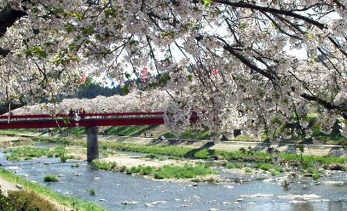Vẻ đẹp bình yên của nhà truyền thống Nhật Bản - 14