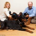 Tin tức - Giàu to vì chó đẻ một lúc… 13 con