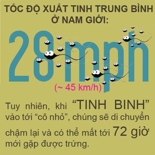 "infographic: 1 phut co 5000 nguoi dang ""yeu"" - 3"