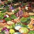 Mua sắm - Giá cả - Khoai tây nghi nhiễm độc vẫn ngập chợ