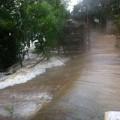 Hải Phòng thiệt hại nặng do bão số 2