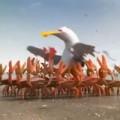 Clip Eva - Video hài: Đoàn kết là sức mạnh