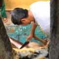Tin tức - Xôn xao việc nhân viên vườn thú giết nai làm thịt