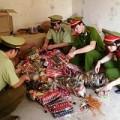 Tin tức - Bắt gần 2 tấn bánh kẹo T.Q nhập lậu