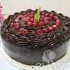 Sinh nhật bằng bánh chocolate kem dừa