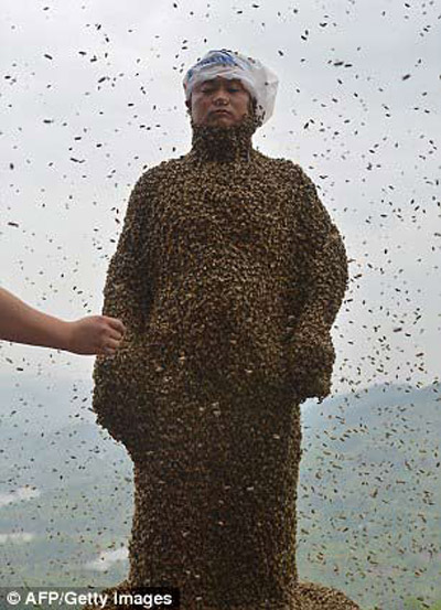 "soc: 46 van con ong bu kin nguoi ong ""khoa than"" - 2"