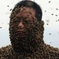 """Tin tức - SỐC: 46 vạn con ong bu kín người ông """"khỏa thân"""""""