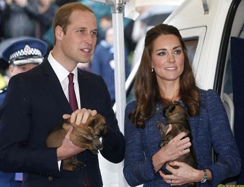 Hoàng tử bé nước Anh xuất ngoại đi Úc-7