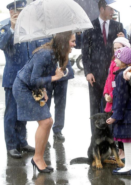 Hoàng tử bé nước Anh xuất ngoại đi Úc-8