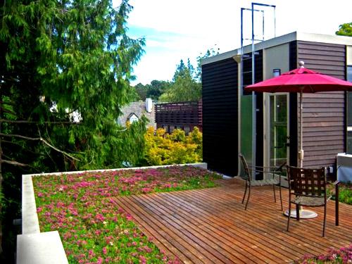 Trồng vườn trên mái làm mát nhà phố-2