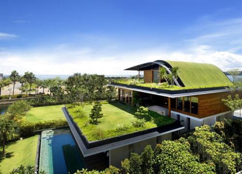 Trồng vườn trên mái làm mát nhà phố-4