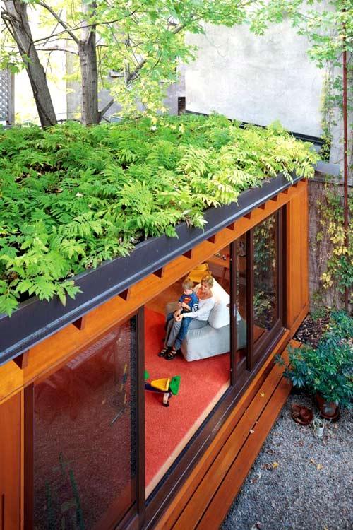 Trồng vườn trên mái làm mát nhà phố-5