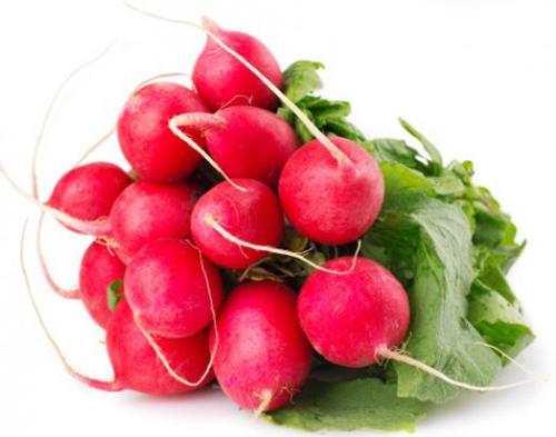 8 loai rau cu ly tuong trong trong nha - 3