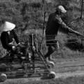 Tin tức - Xóm chạy dây trên cánh đồng bỏ hoang ở Sài Gòn