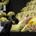 Tin tức - Tổng thống Hàn chính thức xin lỗi vụ chìm phà Sewol
