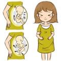 Bà bầu - Trong bụng mẹ, thai nhi nghịch 'thôi rồi'