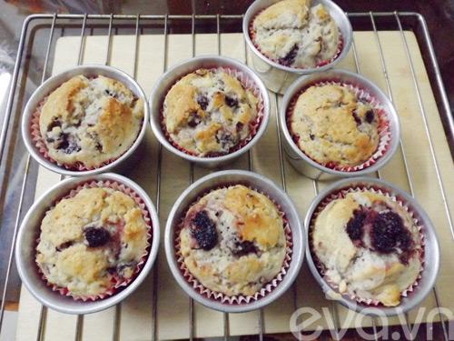 banh muffin dau tam day hap dan - 11