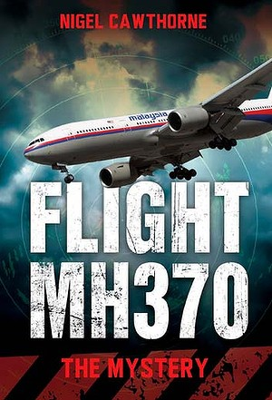 "may bay mat tich mh370 co the ""bi vo tinh ban roi"" - 1"