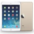 Eva Sành điệu - Rò rỉ ảnh thực tế mô hình iPad Pro màn hình 12,9 inch