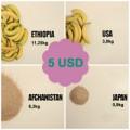 Bếp Eva - 5 USD có thể mua được bao nhiêu đồ ăn TG
