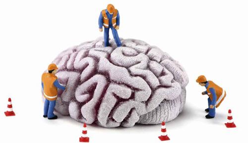 Trẻ lâu nhờ lao động trí não-1