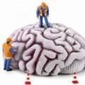 Sức khỏe - Trẻ lâu nhờ lao động trí não