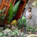 """Nhà đẹp - Những ngôi nhà """"bình dân"""" của sao Việt"""