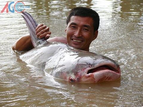 khuc song cua nhung 'thuy quai' khong lo - 2