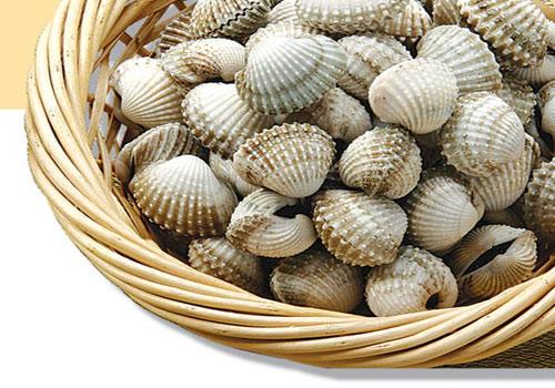 Cách chọn hải sản tươi ngon mùa đi biển - 3