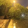 Tin tức - Chiều nay, Hà Nội lại xuất hiện mưa dông