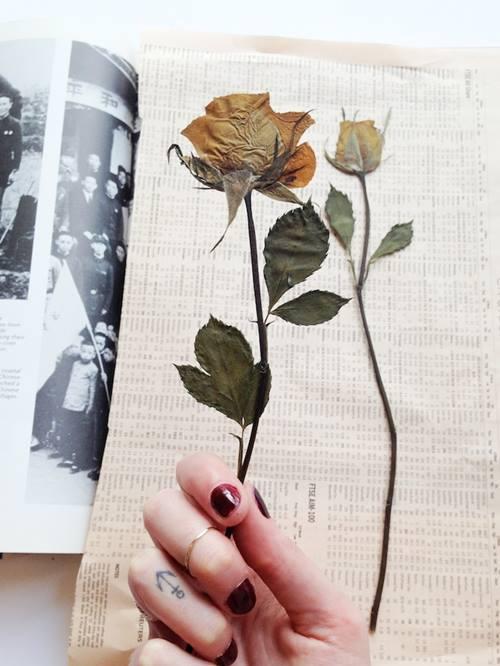 sang tao tranh treo tuong tu hoa kho - 6