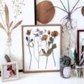 Nhà đẹp - Sáng tạo tranh treo tường từ hoa khô