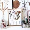 Sáng tạo tranh treo tường từ hoa khô