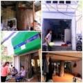 Tin tức - Hà Nội: Kì lạ cây mọc xuyên nhà