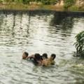 Tin tức - Bé trai 2 tuổi thoát chết sau đuối nước