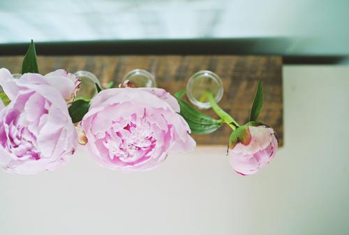 lo hoa ca tinh lam tu go + ong nghiem - 2