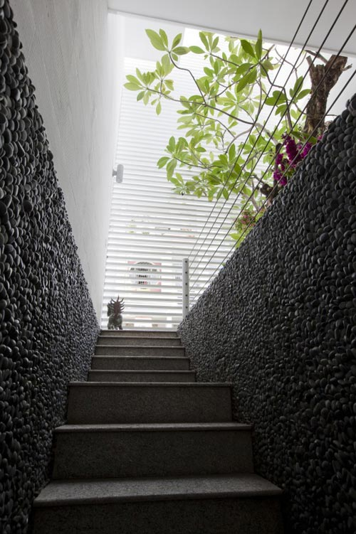 80m2 nhà ống Sài Gòn đẹp ngọt ngào - 3