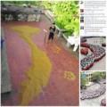Tin tức - Xúc động hình ảnh bản đồ Việt Nam xếp bằng thóc
